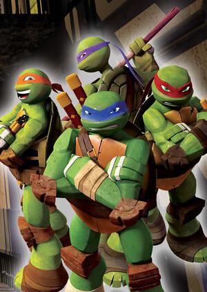 忍者龟 第二季