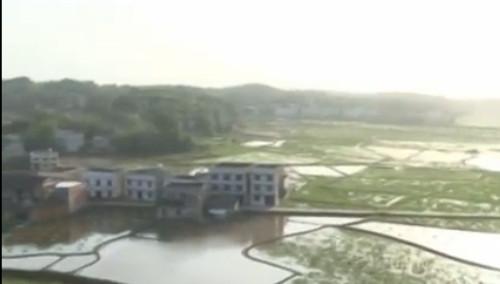 市井发现《一个地方》:湘潭县花石镇 莲田一年四季都有宝